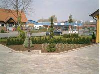 bepflanzung8_gr